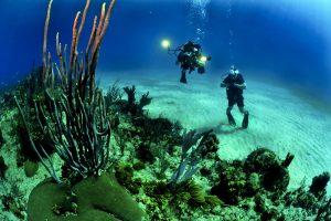 Dykkerlygte
