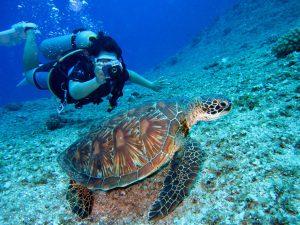 bedre med dykkerlygte